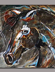 Hand Painted Modern Animal  Painting with Stretched Frame Ready to Hang