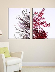 Stretched Canvas Art Pop Art Double Color Leaves Set of 2