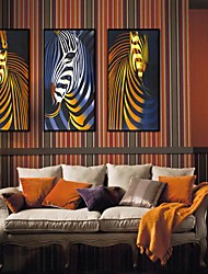 Abstract Zebra Arts Framed Canvas Print Set of  3
