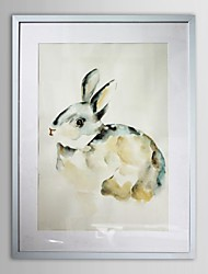 Animal Rabbit Framed Art Print