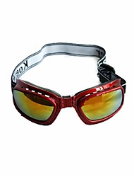 Sponge Cushion Safety Eye Protection Goggles Glasses with Elastic Strap