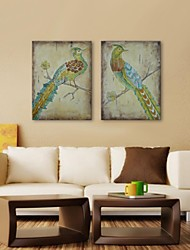IARTS®Hand Painted Wall Art Wall Decor, Retro Style Animal Peacock Hand Painted Wall Décor