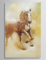 Hand Painted Oil Painting Animal Galloping Horse with Stretched Frame
