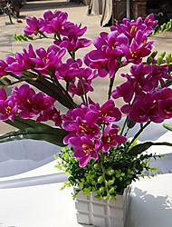 "24 ""H Phalaenopsis Cerámica Jarrón"