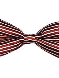Man's Fashion Streak Colorful Bow Tie(More Colors)