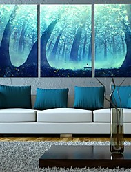 Stretched Canvas Art Fantasy Forest Set of 3