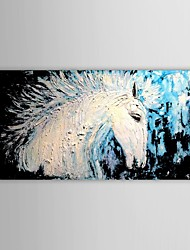 Hand Painted Oil Painting Animal Heavy Texture Horse Picture with Stretched Frame