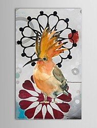 Hand Painted Oil Painting Animal Woodpecker with Stretched Frame