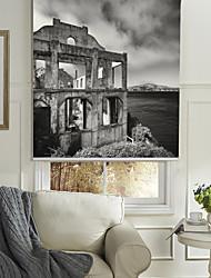 Monochrome Style Deserted House Roller Shade