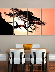 Stretched Canvas Art The Tree And Sunset Landscape Set of 4