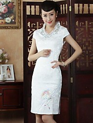 Women's  Embroidery Fashion  Bodycon Chinese Style Dress