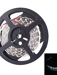 Dual Row 600x5050 SMD 144W 6000LM  White Light LED Strip Light (5-Meter/DC 12V)