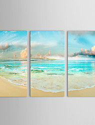 IARTS®Oil Paintings Set of 3 Landscape Sea Coast and Blue Sky Hand-painted On Canvas Ready to Hang