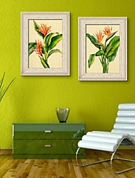 The Beauty of Flowers Framed Canvas Print Set of 2