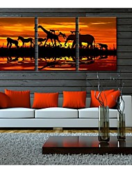 Personalized Canvas Print Stretched Canvas Art Under The Sun 50x35cm 40x60cm 50x70cm Framed Canvas Painting Set of 3