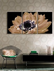 Stretched Canvas Art Flowers In Full Bloom Decoration  Set of 3