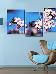 Personalized Canvas Print Stretched Canvas Art The Plum Blossom  35x50cm  50x70cm  Framed Canvas Painting Set of 3