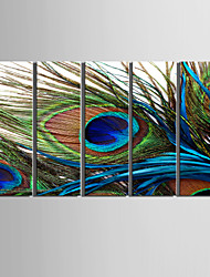 Canvas Set of 5 Still Life Feather of Peacock Stretched Canvas Print Ready to Hang