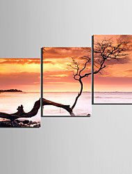 Leinwand Kunst Landschaft To Touch The Sky 3-er Set
