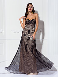 TS Couture® Formal Evening / Military Ball Dress - Vintage Inspired Plus Size / Petite A-line Sweetheart Floor-length Lace / Stretch Satin