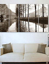 Reproducción en lienzo de arte Landscpe River Bank Juego de 5