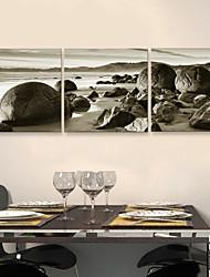 Trasferimenti su tela Arte Paesaggio Mare Rounded Stones Set di 3
