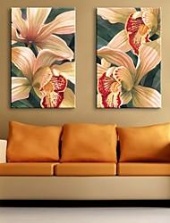 натянутым холстом искусство лилии декоративной живописи набор 2