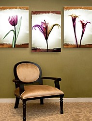 Stretched Canvas Art Flower Decorative Painting Set of 3