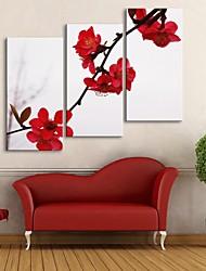 e-FOYER toile tendue art prune rouge fleur peinture décoration ensemble de trois