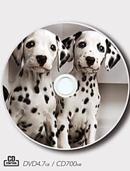 Regalo de la magia patrón mascota personalizada cd-r / dvd-r (juego de 5)