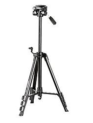 fã wen fp-900 tripé portátil com cabeça berço para filmadora, SLR