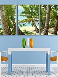 Personalized E-HOME® Canvas Print Beach 35x50cm 40x60cm 50x70cm Framed Canvas Painting Set of 3