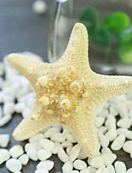 Qihang Photography Decrations Ocean Yellow Starfish Photography Props