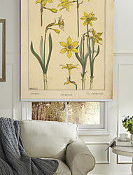 Yellow Narcissus Flowers Roller Shade