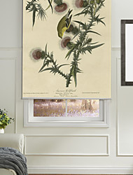 Two Orioles And Dandelion Roller Shade