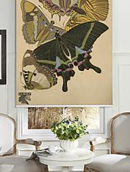 mariposas de colores persiana
