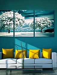 e-FOYER étiré arbres d'art de toile dans la neige ensemble de trois de peinture décoration