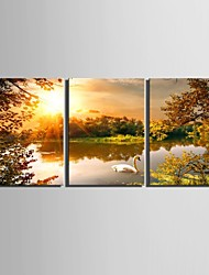 E-HOME® Stretched Canvas Art Lake Decoration Painting Set of 3