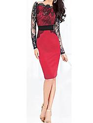 Aamikare Women's Long Sleeve Lace Bodycon Dress