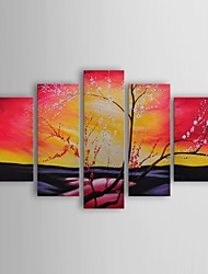 Oil Painting Modern Floral The Great Beyond Set of 5 Hand Painted Canvas with Stretched Frame