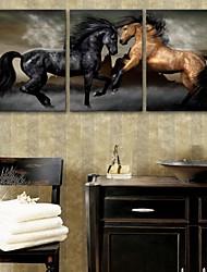 e-FOYER toile tendue art cheval peinture décoration ensemble de trois