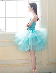 Ballet Women's Chiffon/Polyester Performance/Training Princess Strap Dress