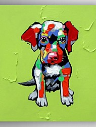 Oil Painting Modern Abstract the Pet Dog Hand Painted Canvas with Stretched Frame