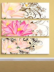 e-home® canvas da arte da flor conjunto pintura decorativa, de 3 de