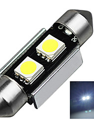 2.9W 12V 7000-8000K 36MM-5050-2SMD C5W with Radiator Canbus License Plate And Tail Box Lighting LED Light for Car