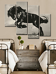 E-HOME® Stretched Canvas Art The Black Horse Decorative Painting Set of 4