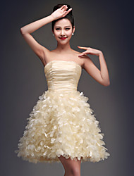 Cocktail Party Dress - Champagne Plus Sizes Ball Gown Strapless Short/Mini Organza