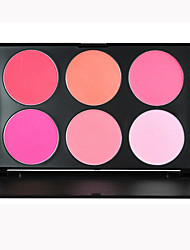 6 Color Professional Beauty Makeup Cosmetic Blush Blusher Powder Palette