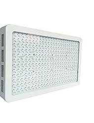 haute puissance 864w spectre complet grandir LED pour les plantes médicinales, l'agriculture, serre 100w / 200w / 400w / 450W