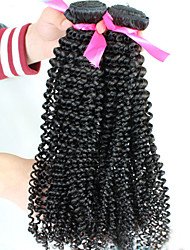 "12""-24"" Unprocessed Brazilian Virgin Hair Natural Black Color Kinky Curly Human Hair Weave Hot Sale."